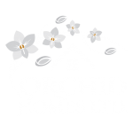 Orchid-Homes